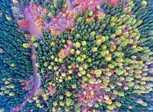 Opiniones aéreas espectaculares del abejón sobre un bosque en las colinas de Jura Mountains suizo imagenes de archivo