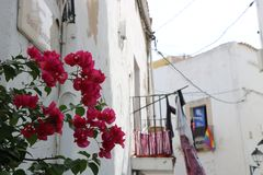 Opiniones agradables el santo Antonio de Ibiza Fotografía de archivo