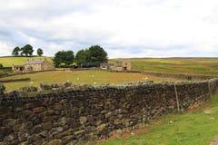 Opiniones coloridas del campo, North Yorkshire Foto de archivo libre de regalías