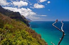 Opiniones de la costa del Na Pali imagen de archivo