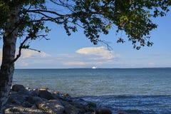 Opiniones del árbol y del mar Foto de archivo