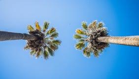 Opiniones del horizonte y de la calle de la ciudad de Sacramento California foto de archivo