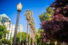 Opiniones del horizonte y de la calle de la ciudad de Sacramento California fotos de archivo