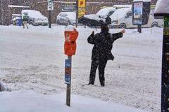Opiniones del invierno de Canadá Imagen de archivo libre de regalías