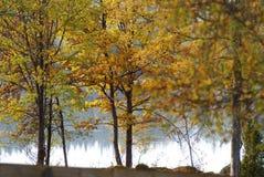 Opiniones del otoño Fotos de archivo libres de regalías