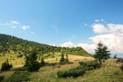 Opiniones del paisaje de las montañas de los Cárpatos, Ucrania imagen de archivo