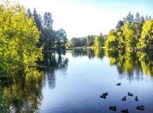 Opiniones del río Foto de archivo