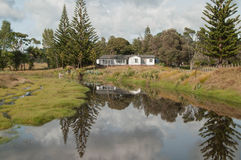 Opito Bay in Coromandel, New Zealand Stock Photography