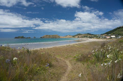 Opito Bay in Coromandel, New Zealand. Opito Bay is one of New Zealand's true hidden treasures and it is one of the best holiday destinations on the Coromandel Royalty Free Stock Photo