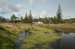 House in Opito Bay on Coromandel, New Zealand Stock Image