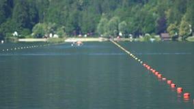 Opleidend alvorens concurrentie te roeien, atleten die water van sport, levensstijl de genieten stock videobeelden