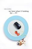 Oplossingsleverancier met voedseldecoratie Royalty-vrije Stock Foto