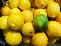 Opmerkelijke groene kalk bovenop gele citroenenachtergrond Stock Foto