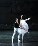 Opnieuw de prins en het zwaan-Zwaan oever van het meer-Ballet Zwaanmeer Stock Foto's