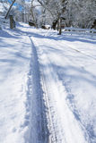 Opona ślada w śniegu 01 Zdjęcie Royalty Free