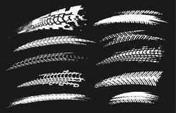 Opona Tropi Elements-03 Zdjęcie Royalty Free