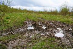 Opony stąpanie samochodowi koła nieociosana wiejska droga w Pskov regionie, Rosja, Północny Europa Zdjęcia Stock
