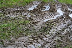 Opony stąpanie samochodowi koła nieociosana wiejska droga w Pskov regionie, Rosja, Północny Europa Obraz Stock