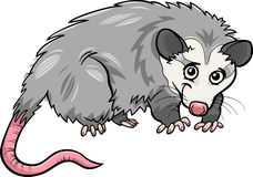 Opossum animal cartoon illustration Royalty Free Stock Photo