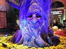 Opowiadać drzewa Fotografia Royalty Free
