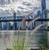 Opowieść mostu roślina fotografia royalty free