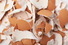 Oppervlakte met ei datshells wordt behandeld Royalty-vrije Stock Fotografie