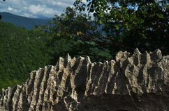 Oppervlakte rotsachtig kalksteen, grijze kalksteen en achtergrond in Thailand Stock Fotografie
