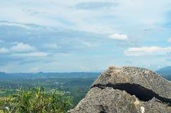 Oppervlakte rotsachtig kalksteen, grijze kalksteen en achtergrond in Thailand Royalty-vrije Stock Foto's