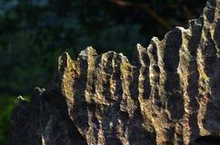 Oppervlakte rotsachtig kalksteen, grijze kalksteen en achtergrond in Thailand Stock Foto
