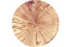 Oppervlakte van een boomstam royalty-vrije stock afbeeldingen