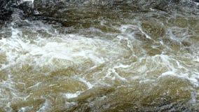 Oppervlakte van een ondiepe snel stromende stroom die over ondergedompelde rotsen wervelen stock videobeelden