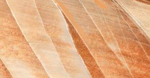 Oppervlakte van een rots met minerale aders, achtergrond of textuur Stock Foto