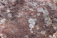 Oppervlakte van natuurlijk   donkerrode steen als achtergrond Royalty-vrije Stock Foto's