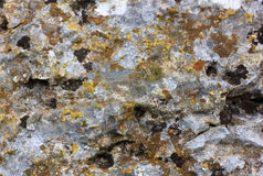 Oppervlakte van oude steen met geelgroen mos Royalty-vrije Stock Afbeelding
