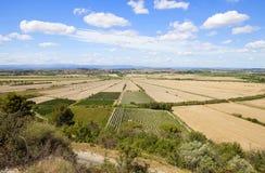 Oppidum d'Ensérune is een oude heuvel-stad (of oppidum) Royalty-vrije Stock Foto's