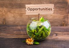 Opportunities. Word on wood sign board with flower and leafs on wood Royalty Free Stock Photo