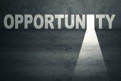 Opportunity Door. Opened opportunity door with bright light Stock Image