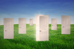 Opportunity doors. Opportunity concept with one opened door among many closed doors in meadow Royalty Free Stock Images