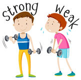 Opposite adjective with strong and weak. Illustration Stock Photography
