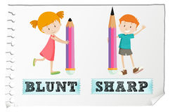 Opposite adjectives with blunt and sharp Stock Photography
