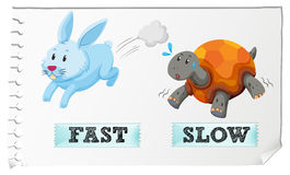Opposite adjectives fast and slow Stock Photo