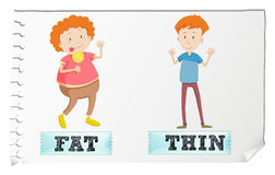 Opposite adjectives fat and thin. Illustration Stock Image