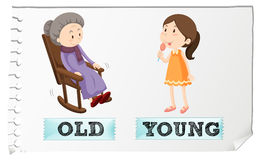 Opposite adjectives old and young. Illustration Royalty Free Stock Photo