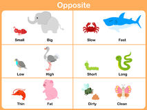 Opposite with animals for preschool - Worksheet for education Royalty Free Stock Image