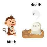 Opposite birth and death illustration Royalty Free Stock Photography