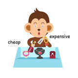 Opposite cheap and expensive illustration. Opposite cheap and expensive vector illustration royalty free illustration
