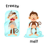 Opposite freeze and melt illustration Royalty Free Stock Photo