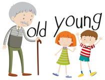 Opposite przymiotniki starzy i młodzi royalty ilustracja