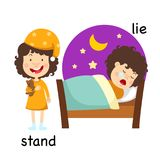 Opposite stand and lie. Vector illustration royalty free illustration