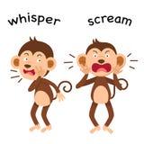 Opposite whisper and scream illustration. Opposite whisper and scream vector illustration Royalty Free Stock Photos